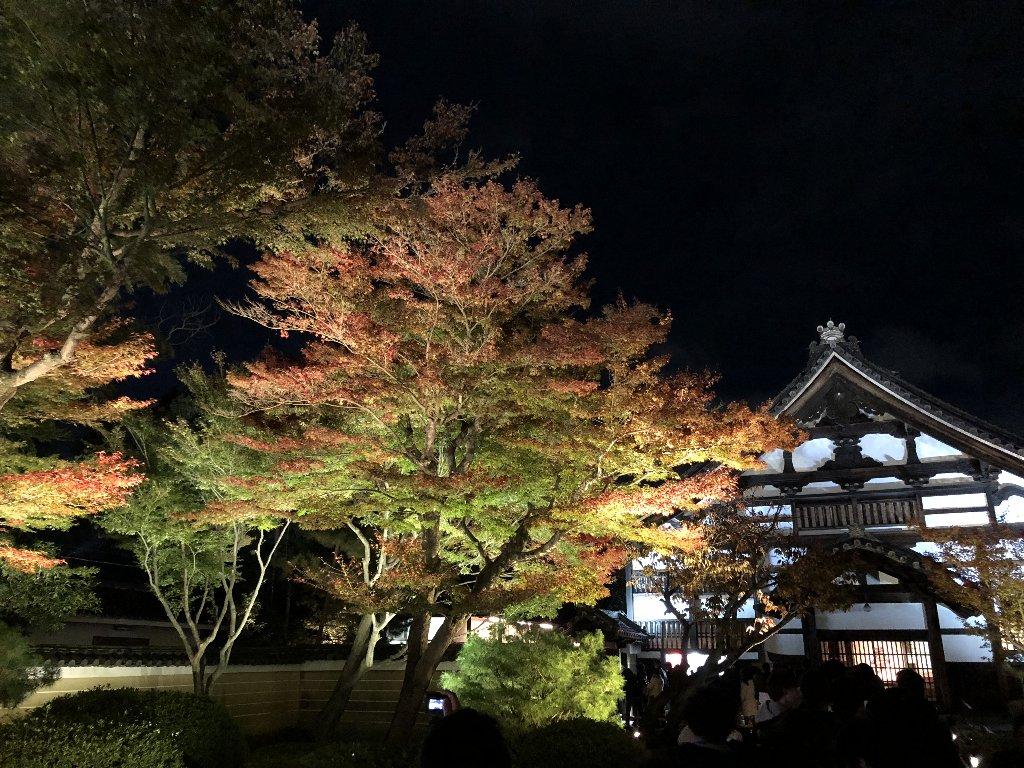 2017kyoto07.jpg