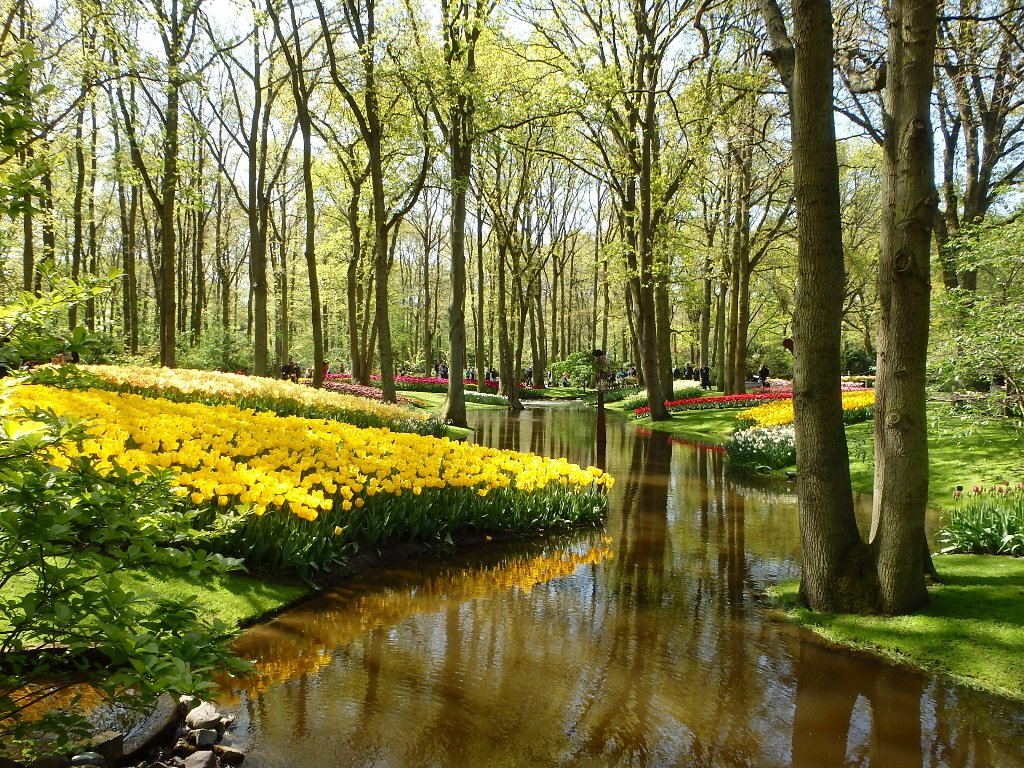 holland1-007.jpg