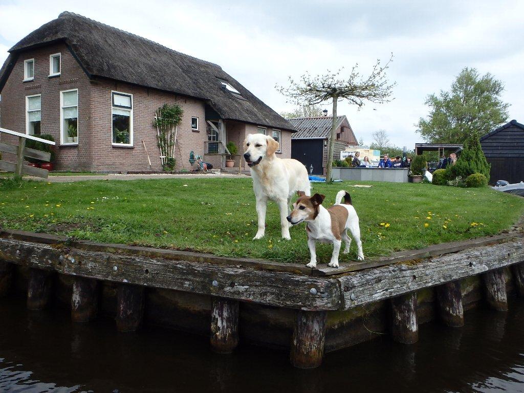 holland3-026.jpg