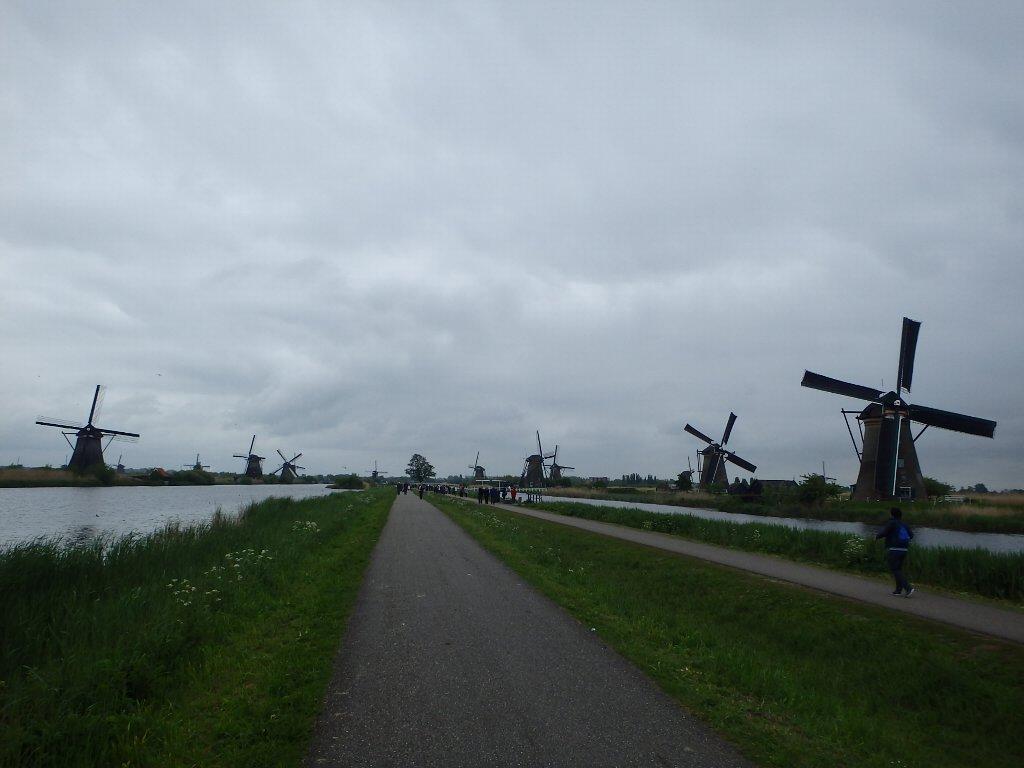 holland4-019.jpg