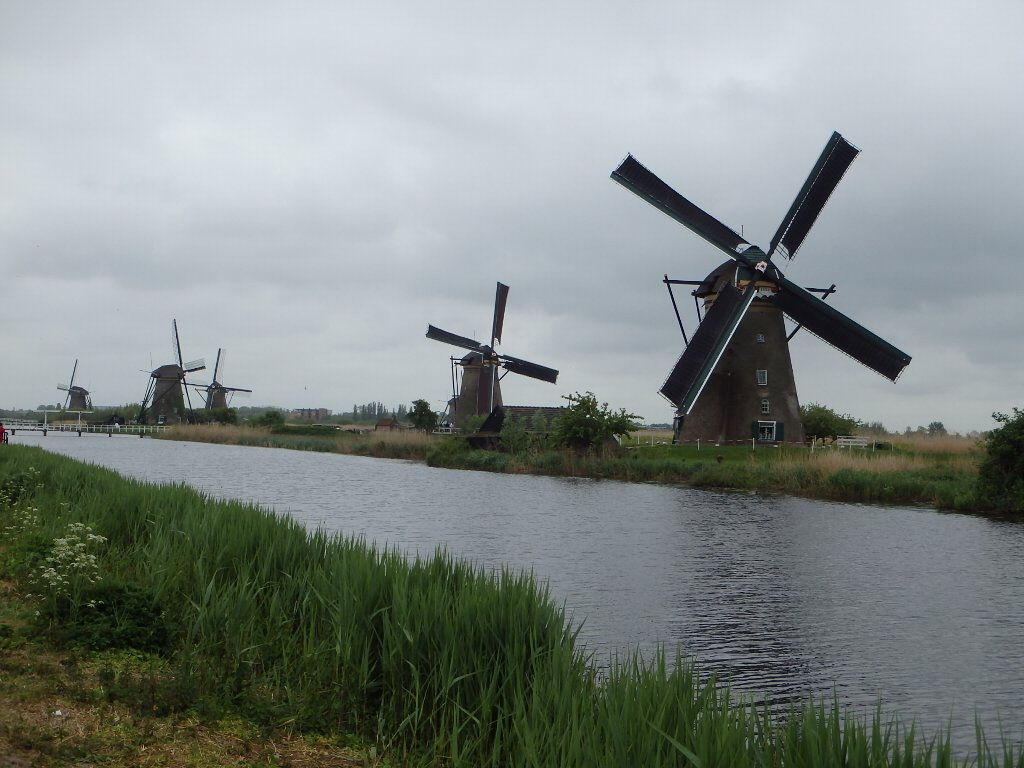 holland4-020.jpg